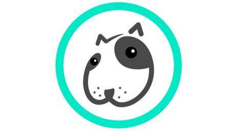 Фото - Поиск и предложение услуг выгула и передержки собак