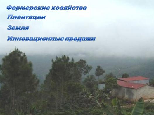 Фото - Платформа для продажи и аренды земли
