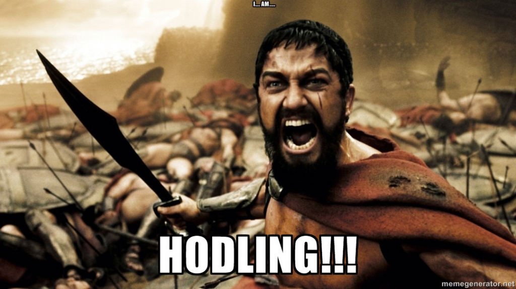 Hodl and Fight!